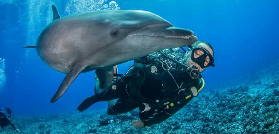 https://tahititourisme.jp/wp-content/uploads/2017/08/Archimedeexpeditionsphotocouverturure_1140x550px.png
