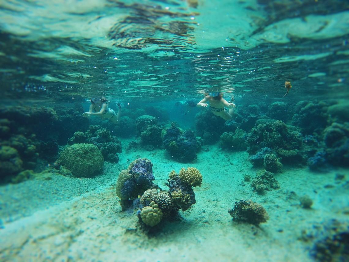 https://tahititourisme.jp/wp-content/uploads/2017/08/Bora-Bora-Reef-Discovery-2.jpg