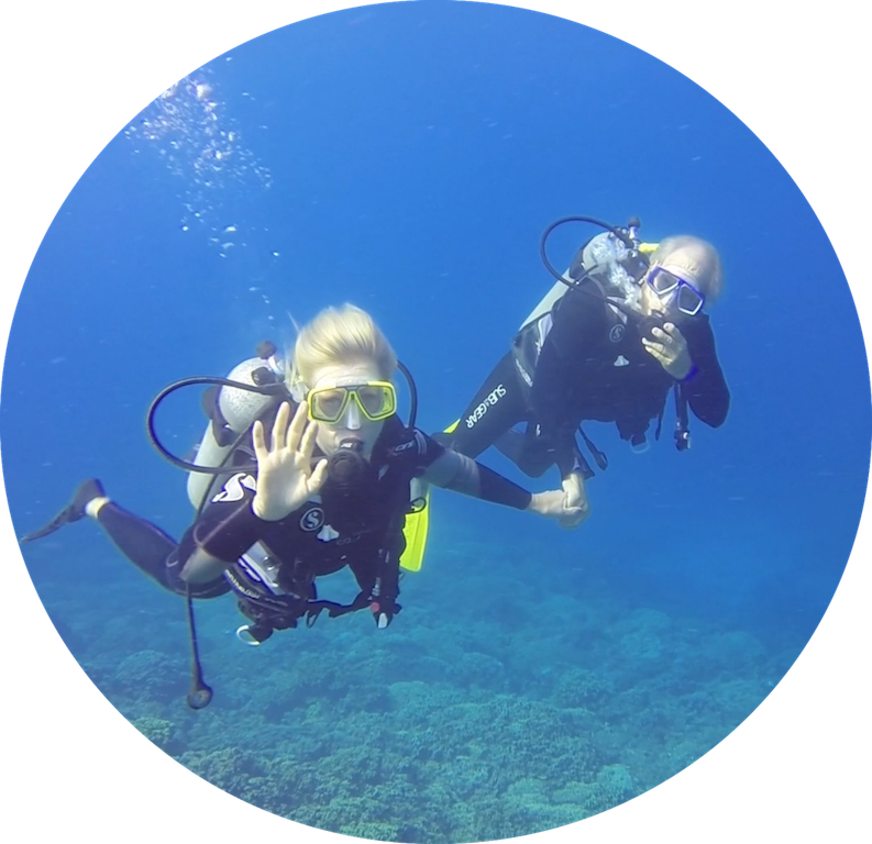 https://tahititourisme.jp/wp-content/uploads/2017/08/Divers-in-the-first-try.png