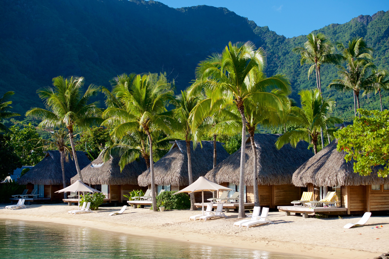 https://tahititourisme.jp/wp-content/uploads/2017/08/HEBERGEMENT-Manava-Beach-Resort-and-Spa-Moorea-2-Tim_McKenna.jpg