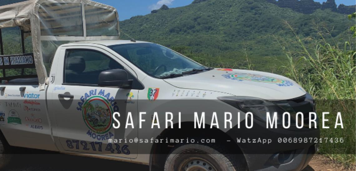https://tahititourisme.jp/wp-content/uploads/2017/08/Safari-Mario-Moorea.png