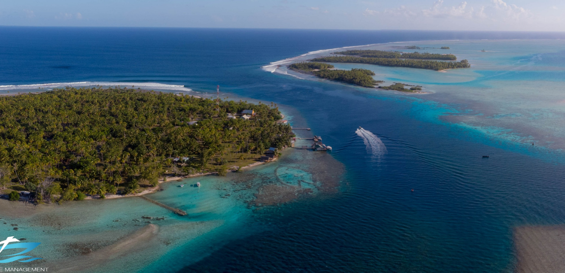 https://tahititourisme.jp/wp-content/uploads/2017/08/Tahiti-Dive-Management.png