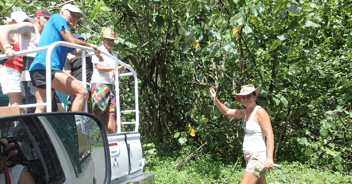 https://tahititourisme.jp/wp-content/uploads/2017/08/Tahiti-Safari-Expeditions_1140x500-min.png