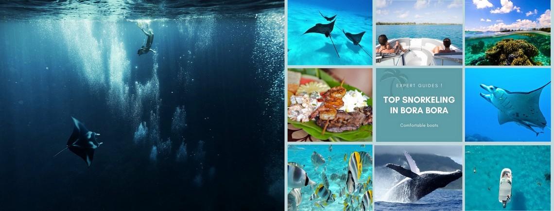 https://tahititourisme.jp/wp-content/uploads/2017/08/reef-discovery-bora-bora.jpg