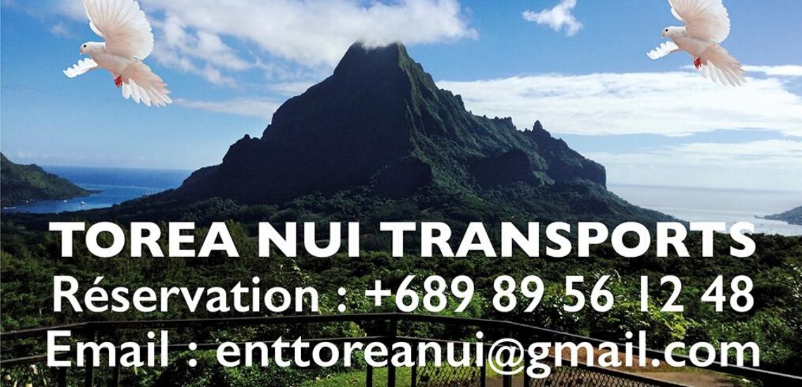 https://tahititourisme.jp/wp-content/uploads/2017/08/torea-nui-transports_1140x550.png