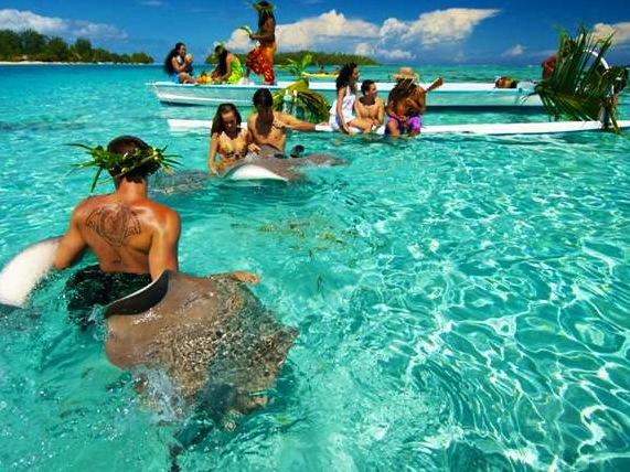 「ボラボラ島 モツピクニック」の画像検索結果