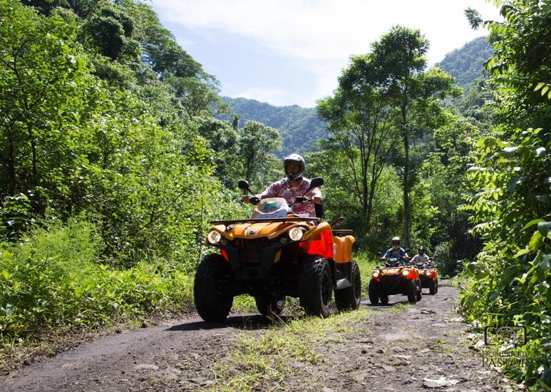 https://tahititourisme.jp/wp-content/uploads/2018/05/ACTIVITES-TERRESTRE-Vaihiria-Quad-Tahiti-2.jpg