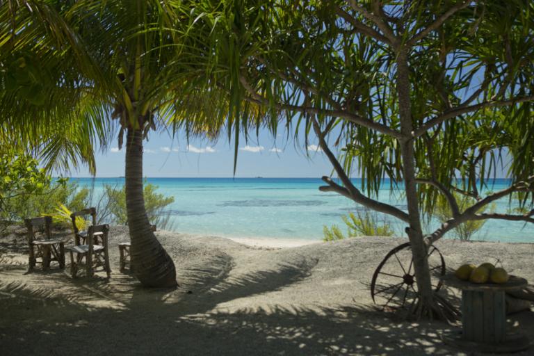 ダイバー憧れのランギロア島でリーズナブルに滞在8日間