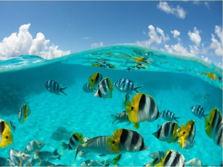 ◆早期予約で最大3万円割◆ボラボラ島+タヒチ島8日間