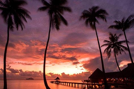 【早特特典あり】星野リゾートに泊まるランギロア島3泊