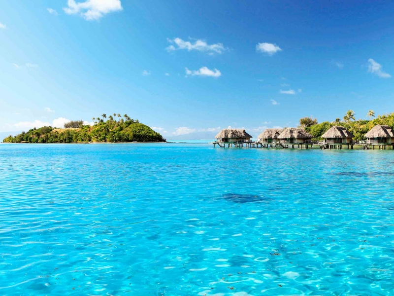 https://tahititourisme.jp/wp-content/uploads/2018/12/out.jpg