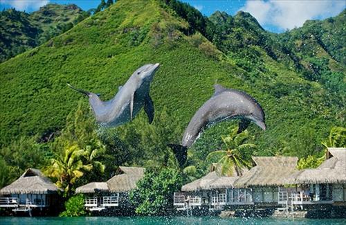 【早期予約で1万円分のリゾートクレジット】 モーレア島+タヒチ島6日間