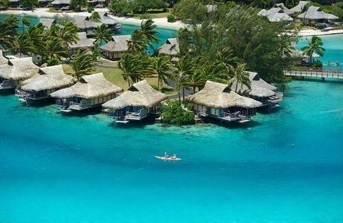 【早期予約特典付き】イルカと触れ合える人気のリゾート!モーレア島8日間