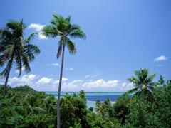 【早特特典あり】マナバビーチリゾート&スパモーレア4泊8日間
