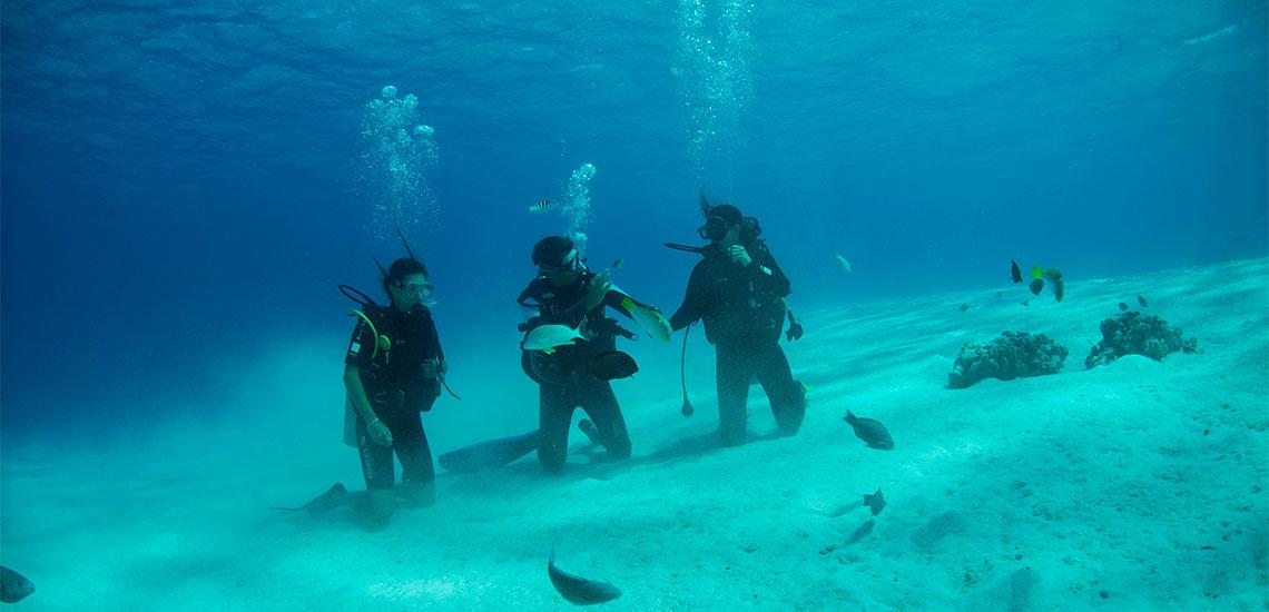 https://tahititourisme.jp/wp-content/uploads/2019/04/Tahiti-Nui-Diving-1140x550.jpg