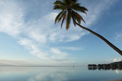 https://tahititourisme.jp/wp-content/uploads/2019/06/moz_sftl_lagoon_white_sand_beach01w472.jpg