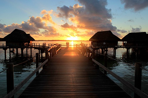 https://tahititourisme.jp/wp-content/uploads/2019/11/image-23.png