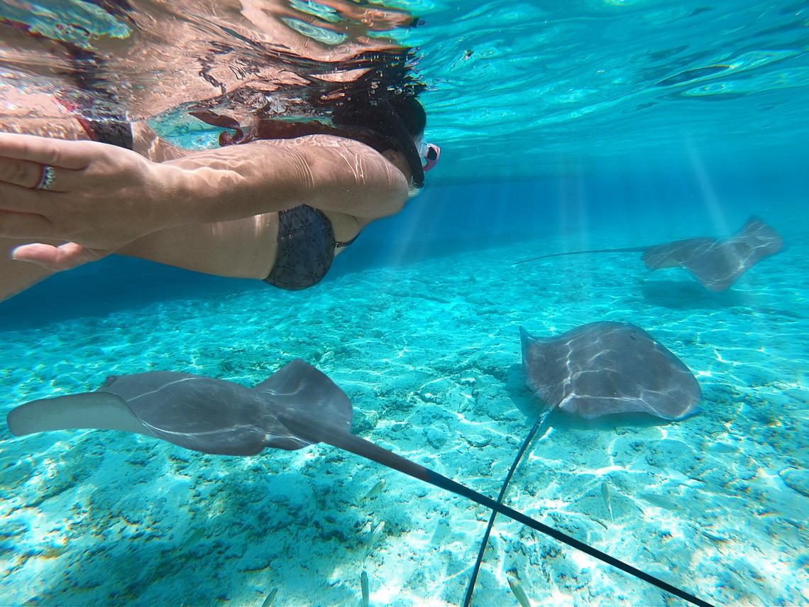 https://tahititourisme.jp/wp-content/uploads/2020/11/Lagoon-Srvice-Bora-Bora-2.jpg