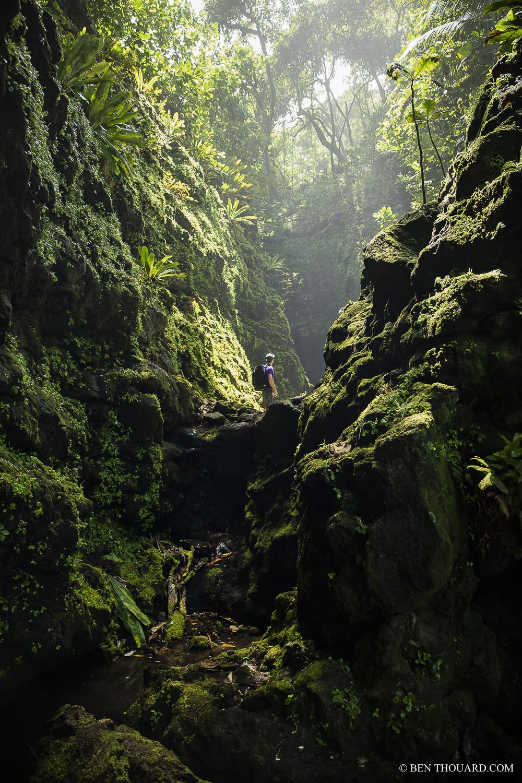 https://tahititourisme.jp/wp-content/uploads/2021/04/benthouard_tepari_hike_0242.jpg