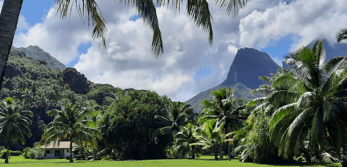 https://tahititourisme.jp/wp-content/uploads/2021/05/residenceapaura_1140x550-1-min.png
